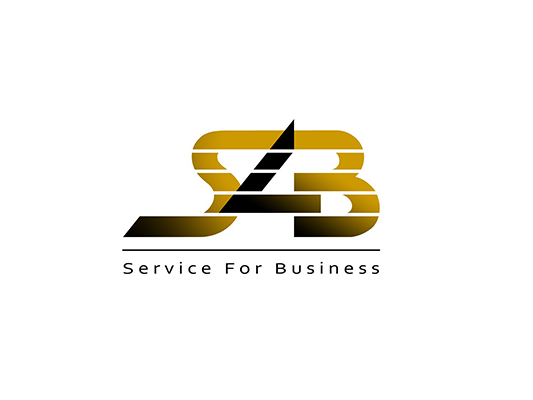 Сайт-визитка строительного холдинга Service 4 Business